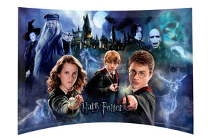 "Harry Potter 14"" x 9"" free-standing  curved glass"