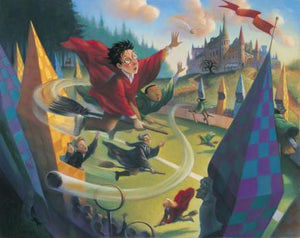 Harry Potter tries to take control the Quidditch World Cup as he chases after it,