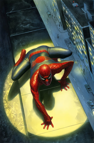 Spectacular Spider-Man - Marvel Art