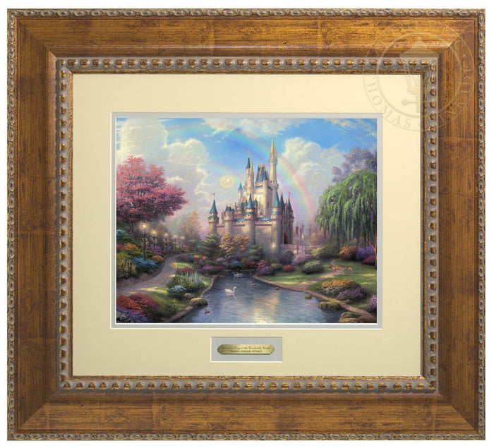 A New Day at Cinderella Castle - Prestige Home