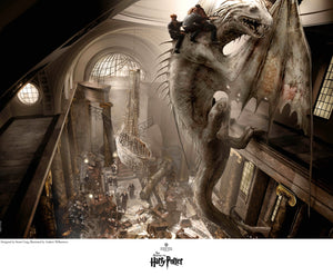 Harry, Ron and Hermione climb on the back of the black dragon as it climbs the walls.