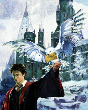 Harry stands ready to let the snowwhite Hegwig owl fly off with the message envelope in it's beak.