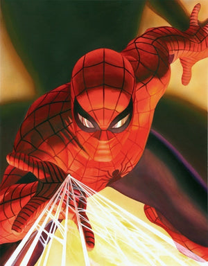 Visions: Spider-Man by Alex Ross.  An up-close portraits of the most iconic Marvel heroes as portrayed by Alex Ross.