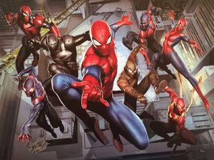 Spider-Man and his Warriors team up.