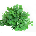 METHI LEAF (FENUGREEK LEAF) 1 PACK