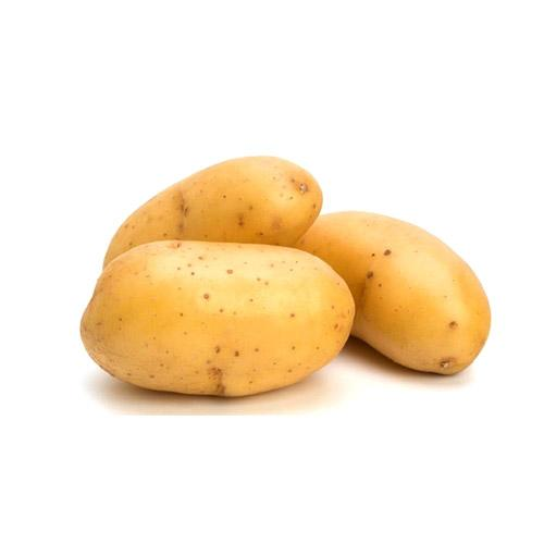 POTATO WHITE