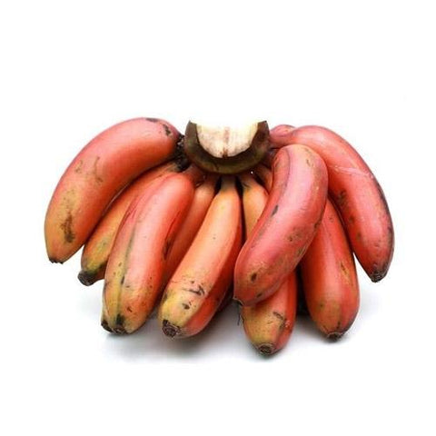 RED BANANA (SEV VAZHAI)