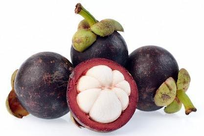 MANGUSTEEN FRUIT