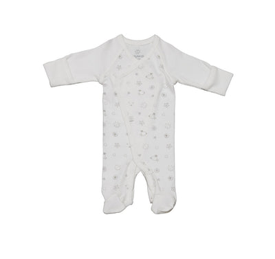 Early Birds Organics Onsie