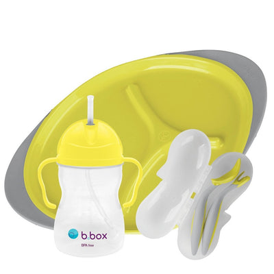 B Box Feeding Set