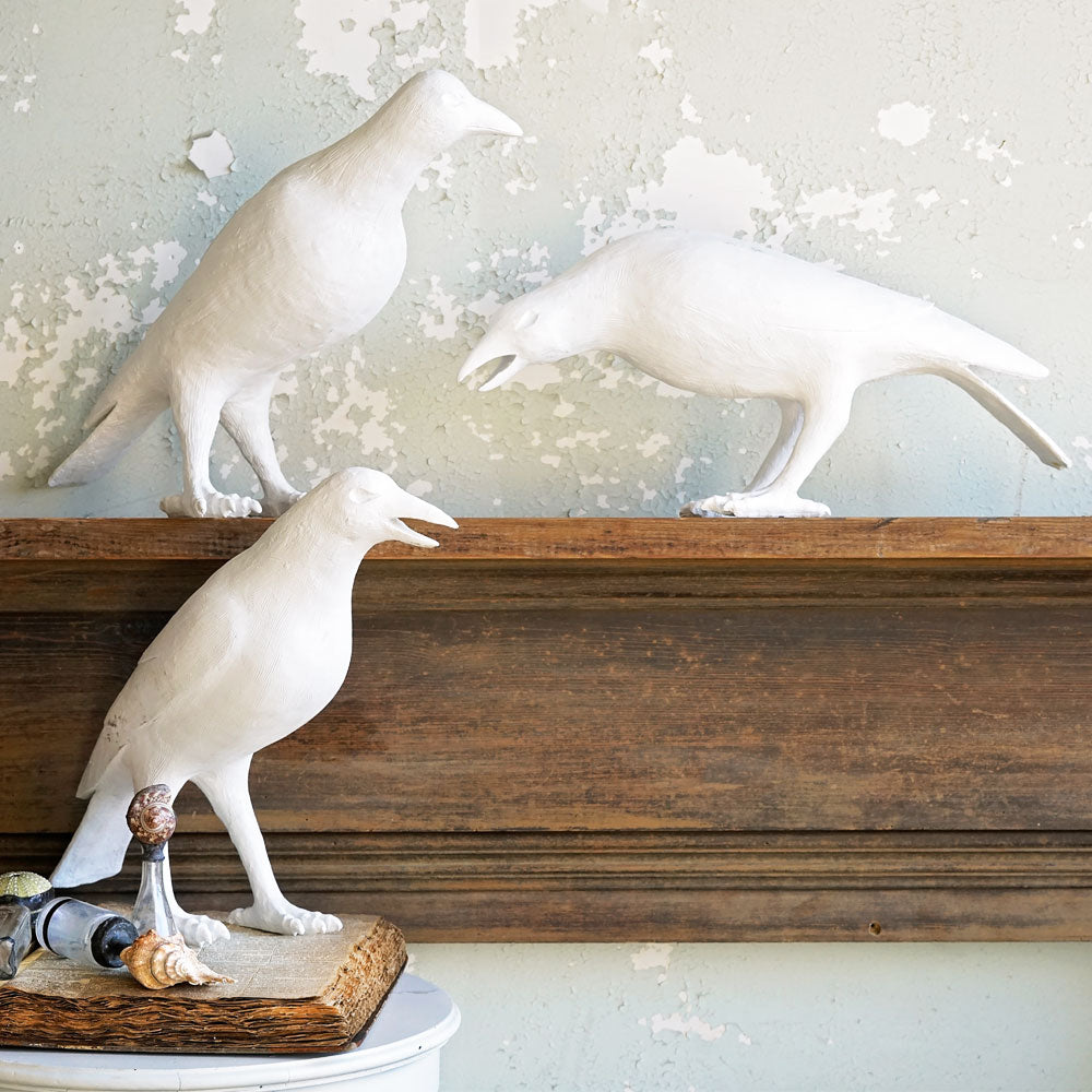 White Crows - Set of 3