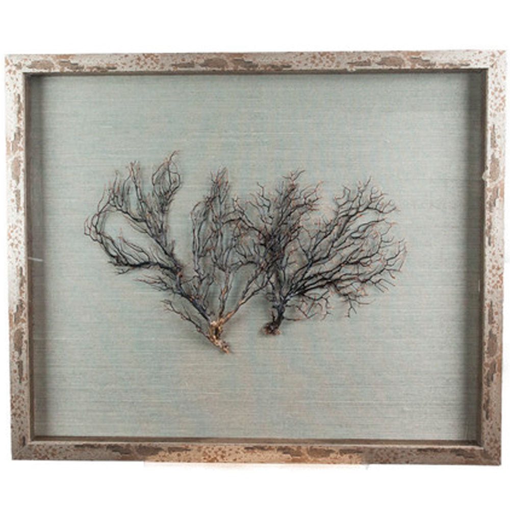 Sealife Shadow Box - Blue-Gray/Natural