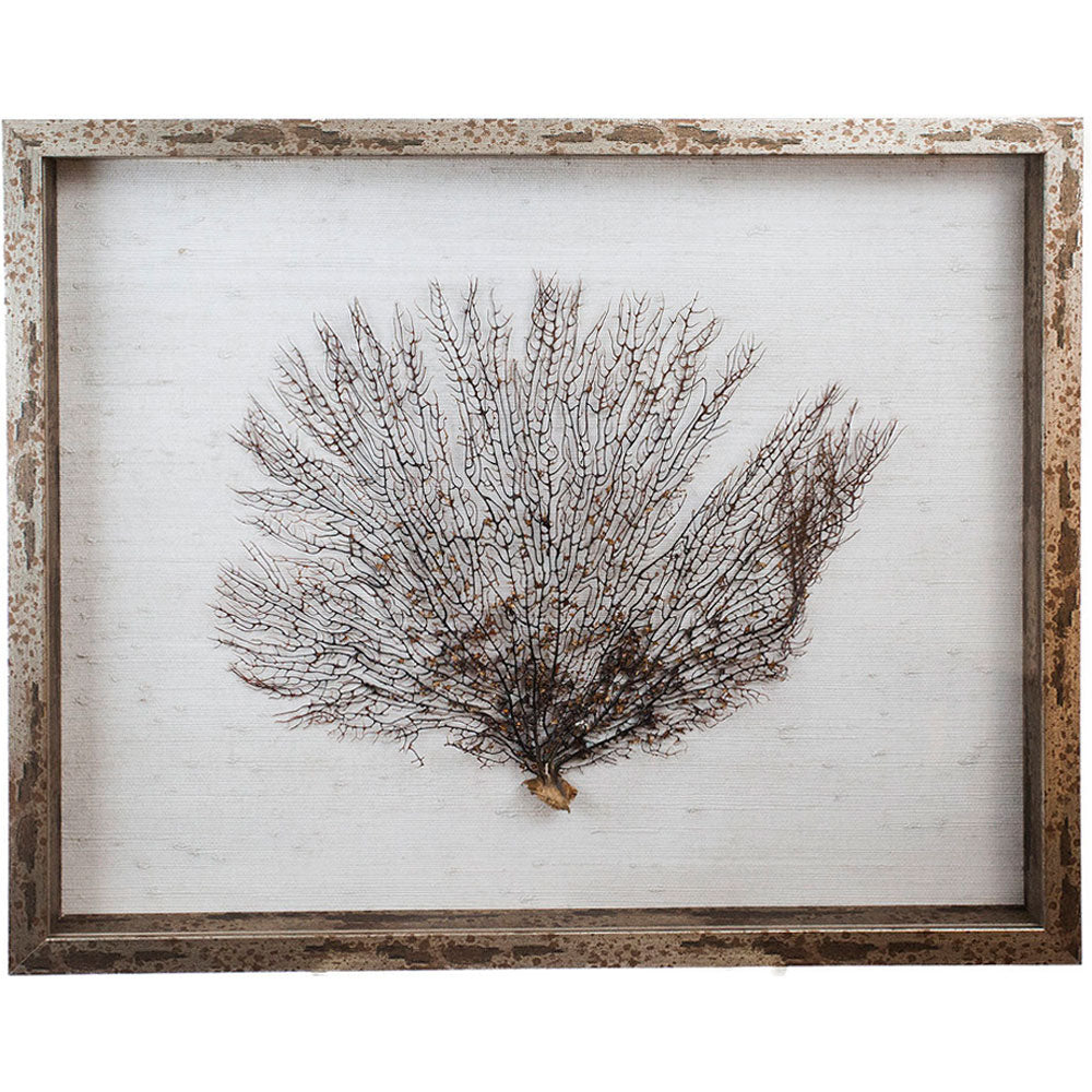 Sealife Shadow Box - White/Natural