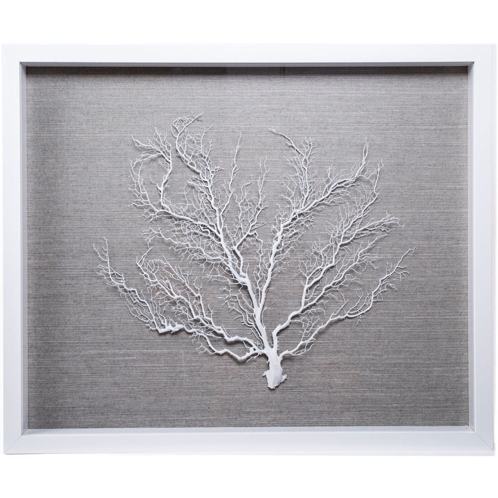 Sealife Shadow Box - Blue-Gray/White or Natural (w/f)...