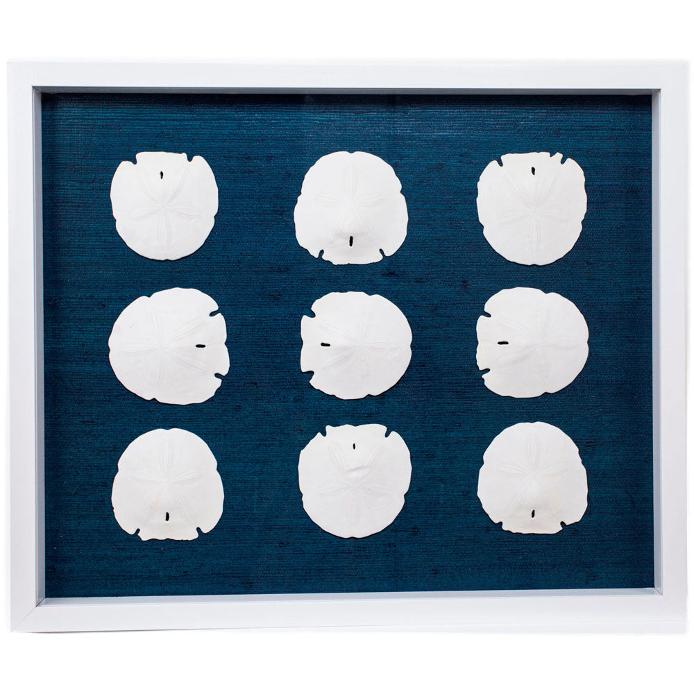 Sealife Shadow Box - Navy/White (w/f) - (SBW-NvWh)