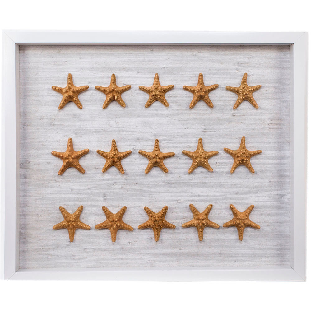 Sealife Shadow Box - White/Gold (w/f) - Starfish