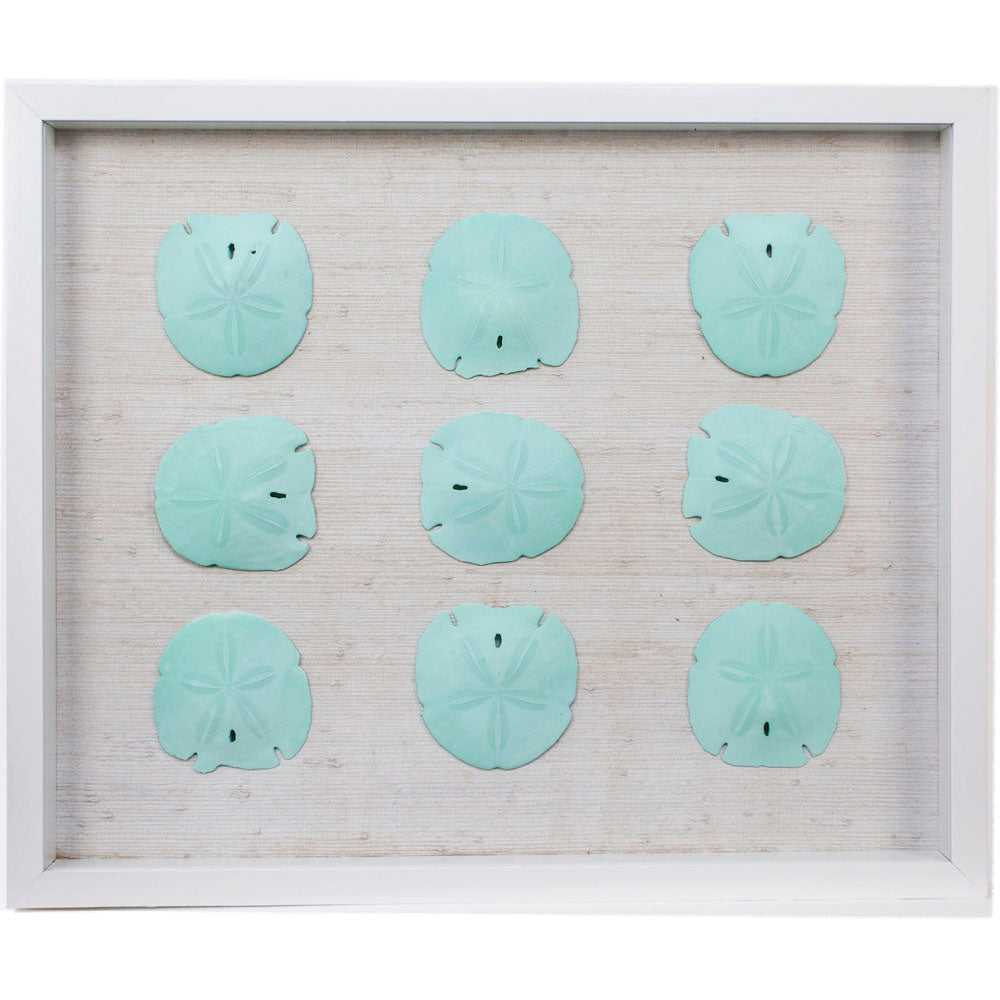 Sealife Shadow Box - White/Ocean (w/f) - Sand Dollar