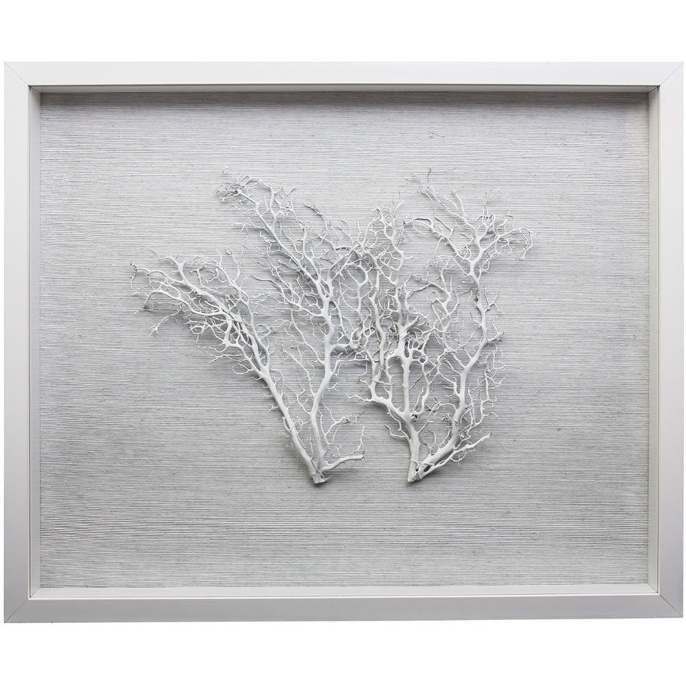 Sealife Shadow Box - White/White