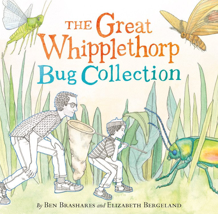 Great Whipplethorp Bug Collection