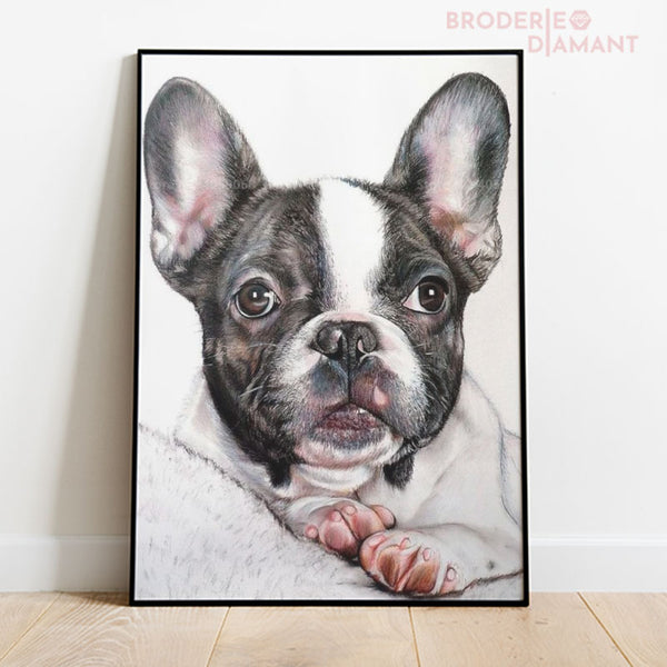 diamond painting bouledogue français