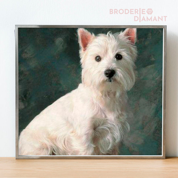 diamond painting chien cairn terrier