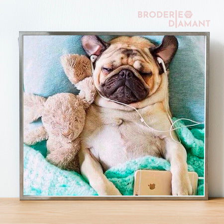 broderie diamant adorable chien carlin