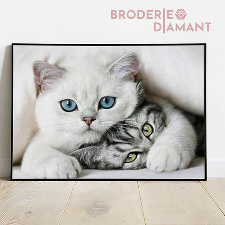 Diamond painting chat yeux bleus