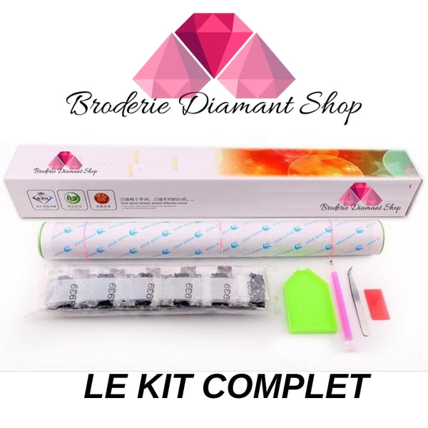 kit complet toile broderie diamant chat multicolore