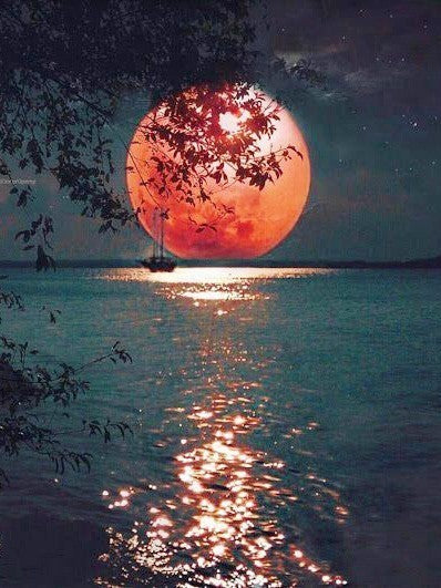 diamond painting coucher de lune