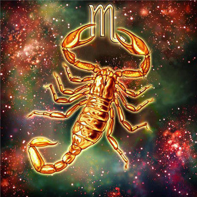 broderie diamant scorpion