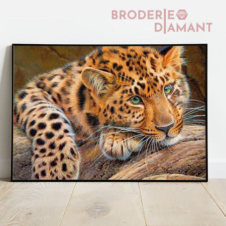 Broderie diamant tigre yeux verts