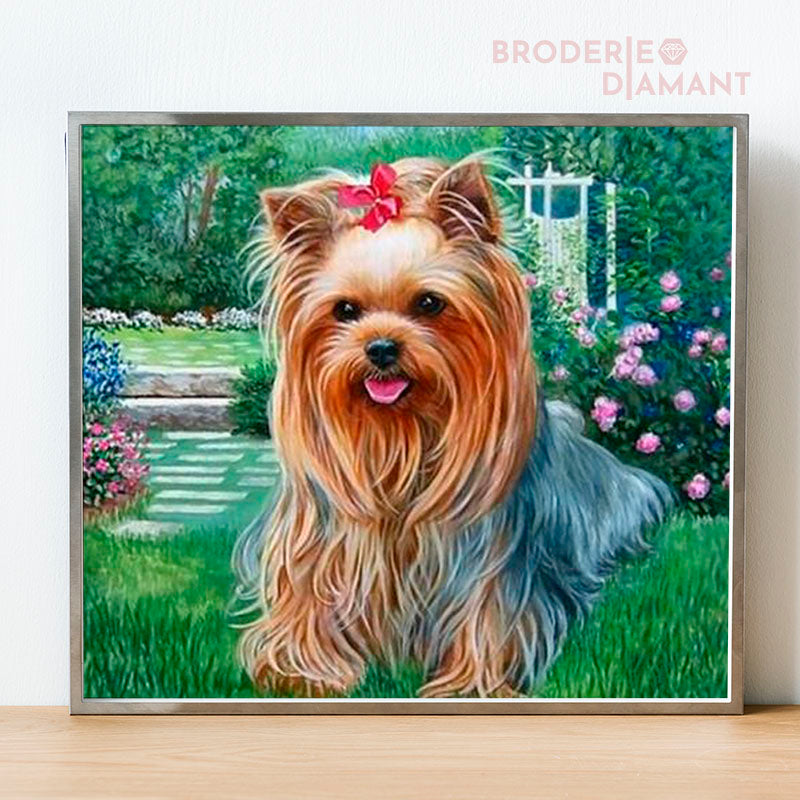 diamond painting chien yorkshire