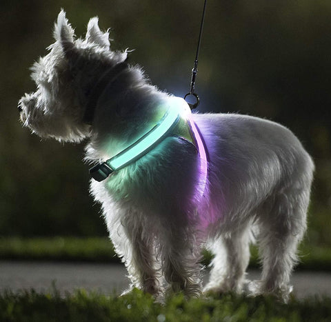 LED DOG HARNESS