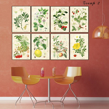 Load image into Gallery viewer, Vintage Botanical Print - Time & Again Shop