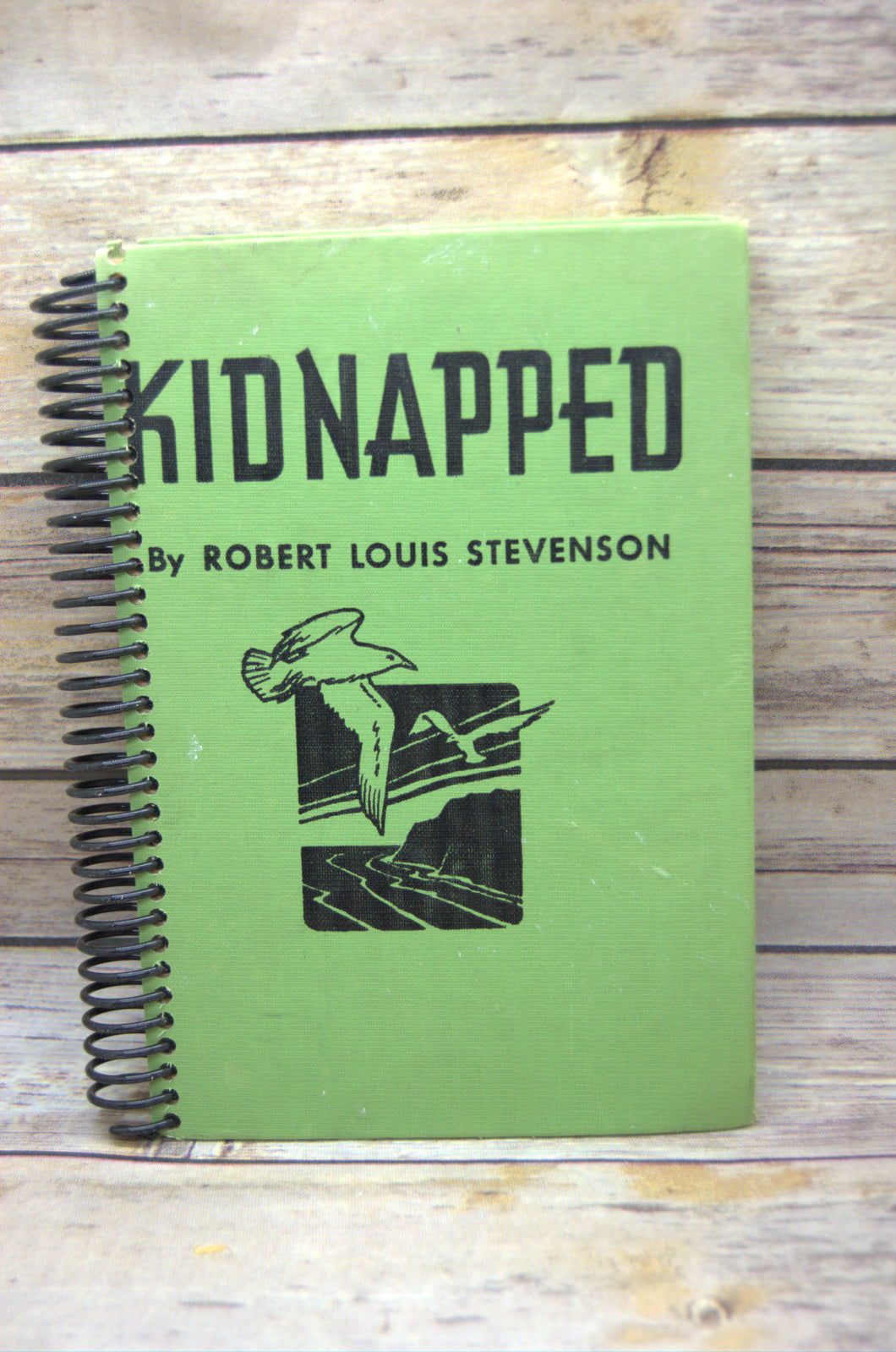 Kidnapped Repurposed Book Journal