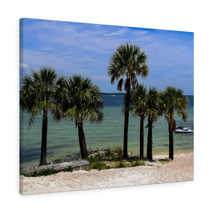 Canvas Wrap:  Palm Trees on the Beach