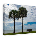 Canvas Wrap:  Two Palms