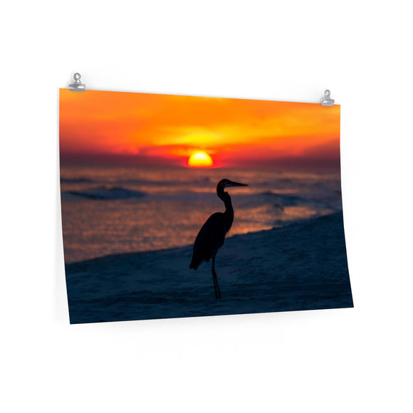 Poster Print:  Blue Heron Sunset