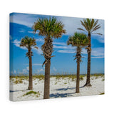 Canvas Wrap: Palm Trees & Ocean Breeze