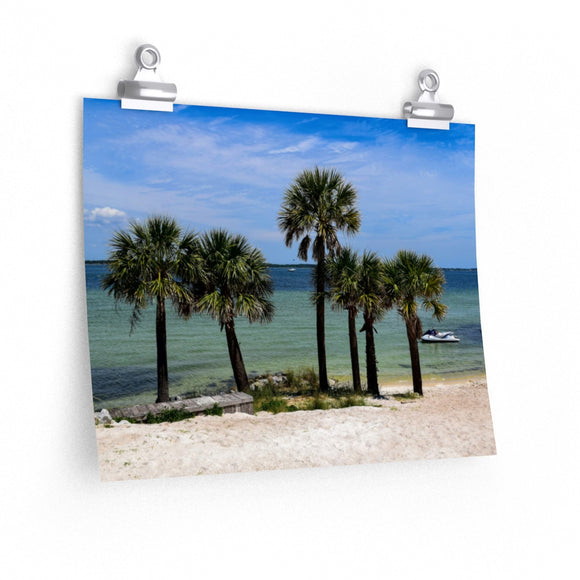 Premium Matte Poster Print: Palm Trees on the Beach