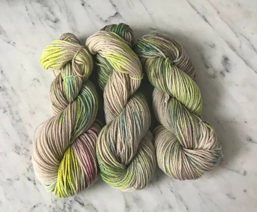 Lots of Fun Worsted Roberta Rae Michigan