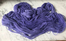 Load image into Gallery viewer, Winter Violet Worsted Roberta Rae Michigan