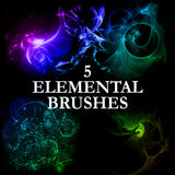 Energy Brush Complete Kit