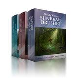 Sunbeams and Fog Collection