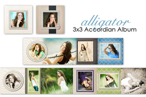 Alligator Accordian Album 3x3