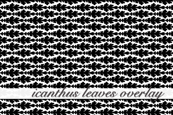 Icanthus Leaves Overlay