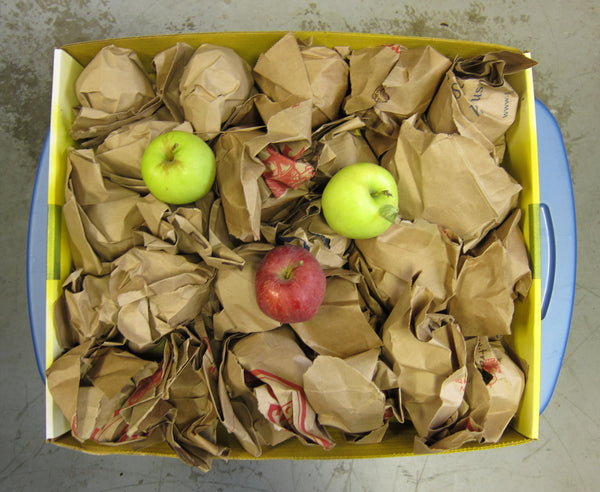 Wrap apples in paper to prevent over ripening in storage