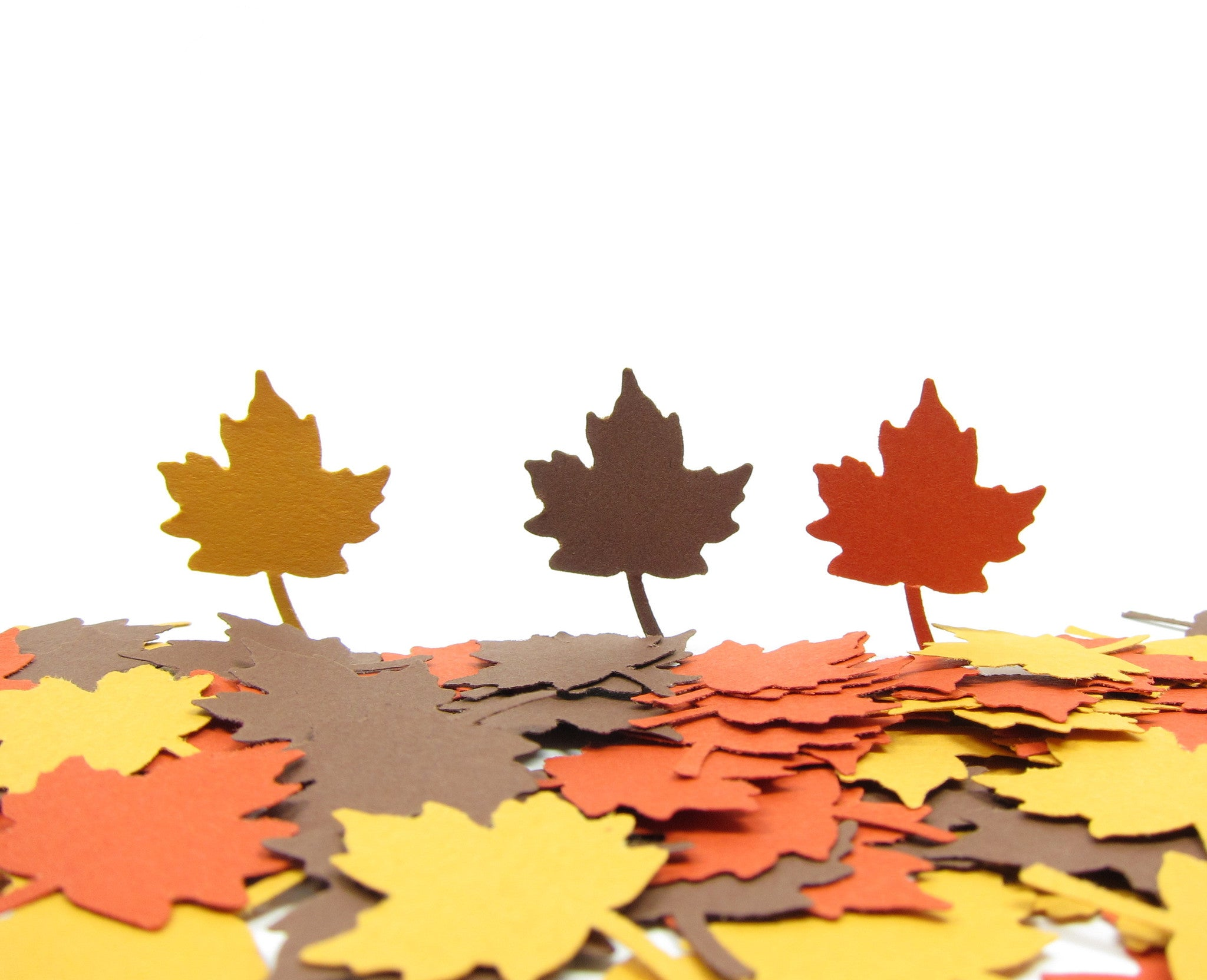 Maple Leaf Confetti Autumn Leaf Paper Punches
