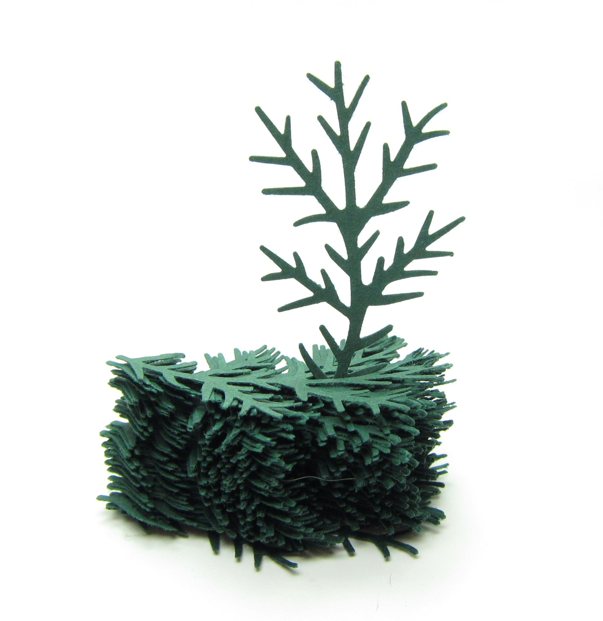 Pine Bough Paper Punches with Evergreen Branch | Brown ...