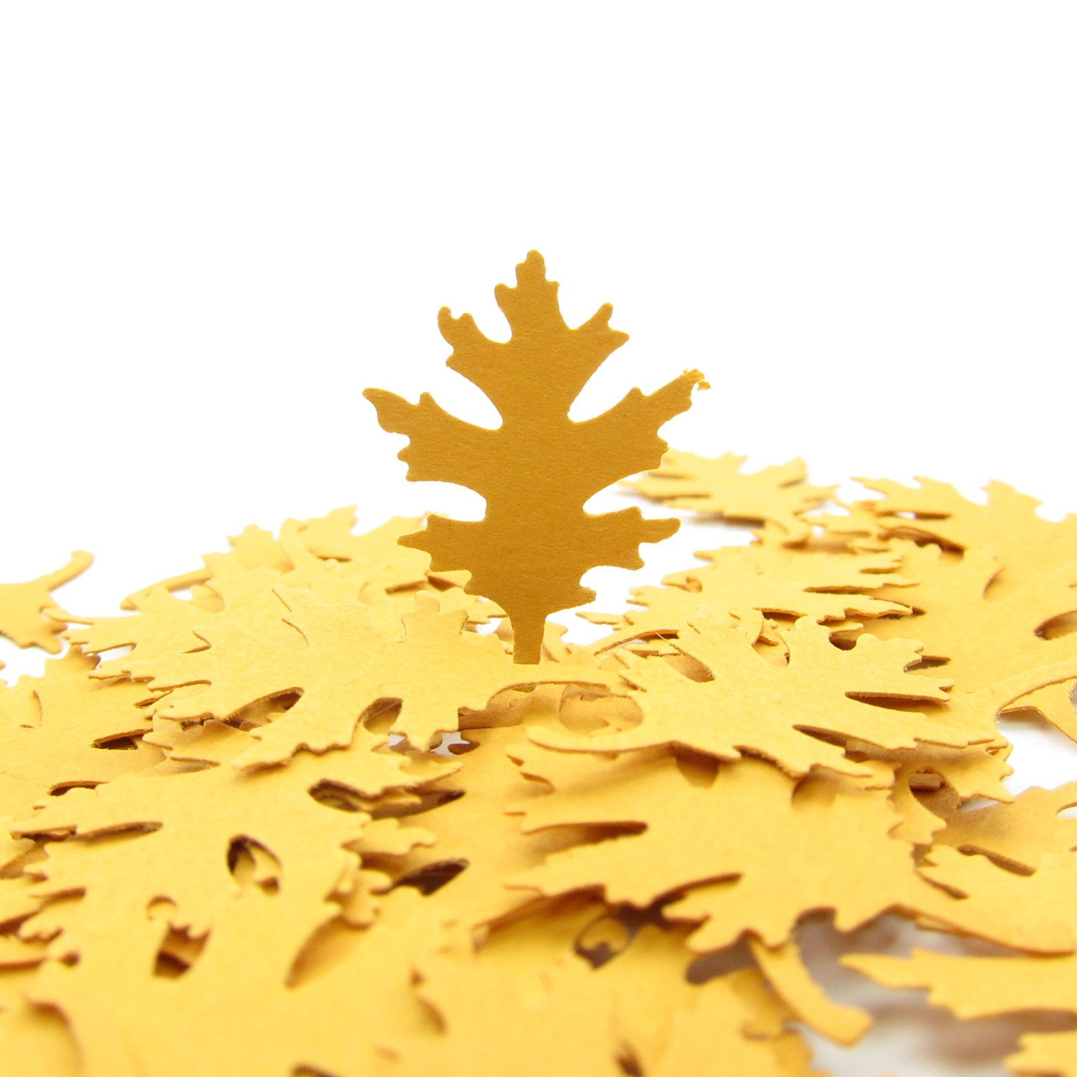 Large oak leaf paper punches or confetti